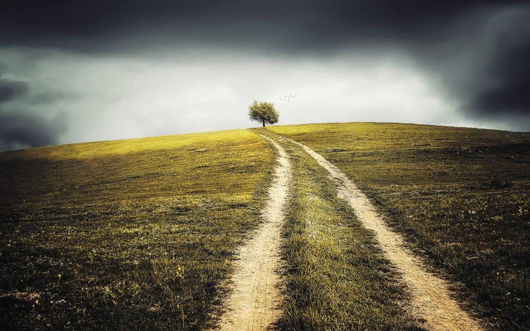 El miedo no permite VER, pero sí crecer.